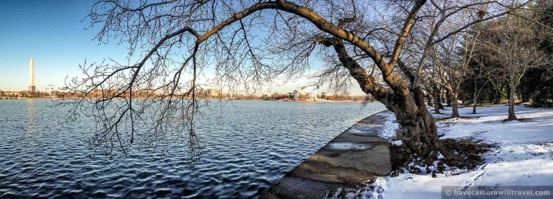 wpid4014-Washington-DC-Cherry-Blossoms-March-5-2014-01-COPYRIGHT.jpg