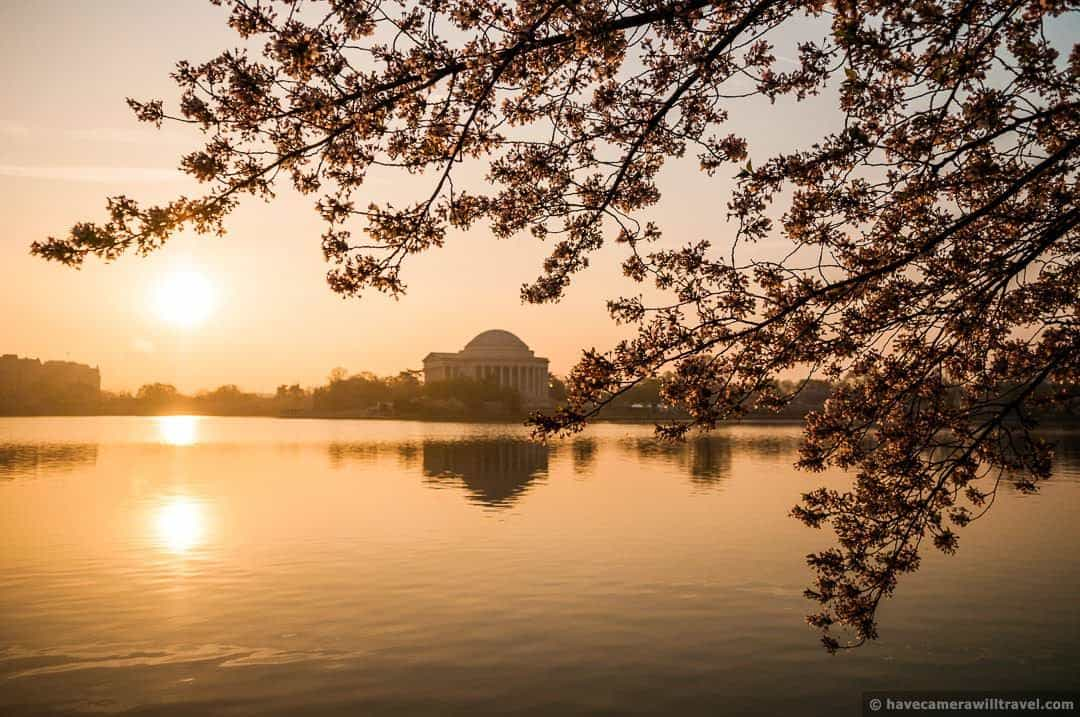 wpid4781-Sunrise-at-the-Tidal-Basin-with-Cherry-Blossoms-01-COPYRIGHT.jpg