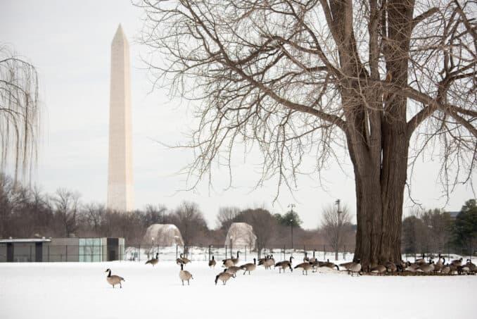 Potomac River Frozen Over - January 26, 2016