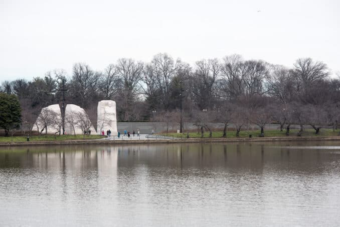 Washington DC Cherry Blossoms with MLK Memorial - February 7, 2016