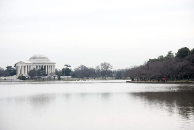 Washington DC Cherry Blossoms with Jefferson Memorial and Tidal Basin - February 7, 2016