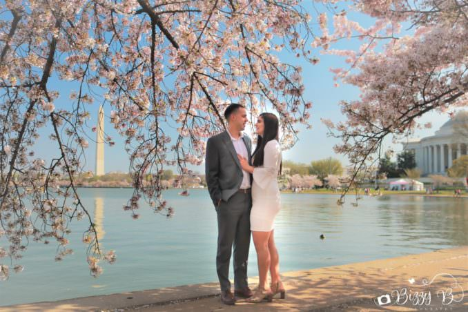 Family or Engagement Photos with the Cherry Blossoms - Local Professional Photographers